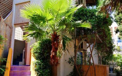 Kuća AlexandrosHanioti